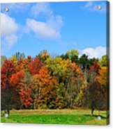 Fall In North Carolina Acrylic Print