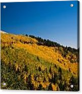 fall in Ruidoso Acrylic Print