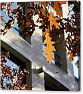 Fall In The City 3 Acrylic Print
