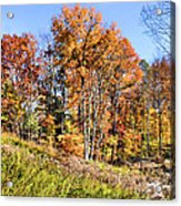 Fall In The Foothills Acrylic Print