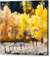 Fall In The Sierra Acrylic Print