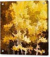 Fall In The Sierra II Acrylic Print