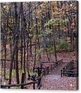 Fall In Yellowsprings Acrylic Print