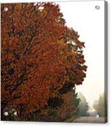 Fall Laneway Acrylic Print