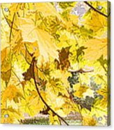 Fall Leaves Abstract Acrylic Print