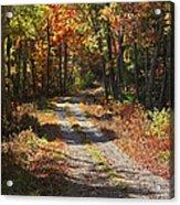 Fall On The Wyrick Trail Acrylic Print