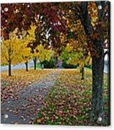 Fall Park Acrylic Print