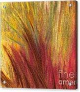 Fall Prairie Grass By Jrr Acrylic Print by First Star Art