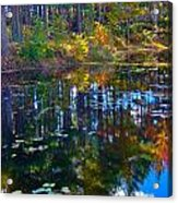 Fall Reflection 2 Acrylic Print