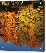 Fall Reflectionsin Michigan Acrylic Print
