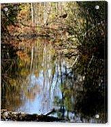 Fall River Undertones Acrylic Print