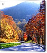 Fall Road 2 Acrylic Print
