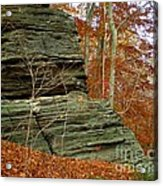 Fall Rock Acrylic Print