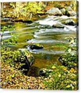 Fall Squared Acrylic Print