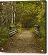 Fall Trail Scene 24 Acrylic Print