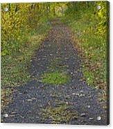 Fall Trail Scene 30  Acrylic Print