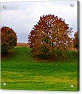 Fall Tree Line Acrylic Print