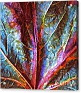 Fall Up Close Acrylic Print
