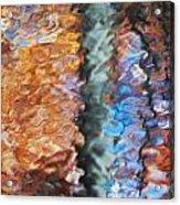 Fall3 Acrylic Print