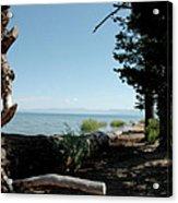 Fallen For Lake Tahoe Acrylic Print