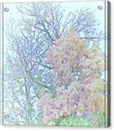 Falling Peace Acrylic Print