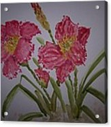 Falling Petal Acrylic Print