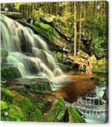 Falling Through The Woods Acrylic Print