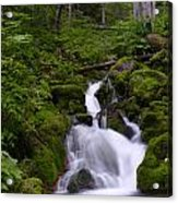 Falls Creek IIi Acrylic Print