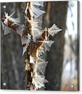Fancy Fractal Frost Crystals Acrylic Print