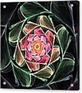 Fantasy Floral Expression 111311 Acrylic Print