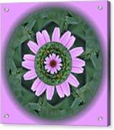 Fantasy Flower Acrylic Print by Linda Pope