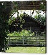 Farmyard Frame Acrylic Print