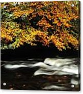 Fast Flowing Water And Fall Colours Acrylic Print
