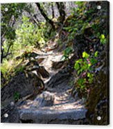 Feather Falls Stairway Acrylic Print