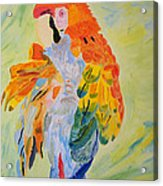 Feathers Showing God's Painting Acrylic Print