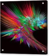 Feathery Bouquet On Black - Abstract Art Acrylic Print