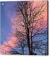 February Sunset Acrylic Print
