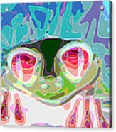 Feeling Froggy Acrylic Print by Jimi Bush