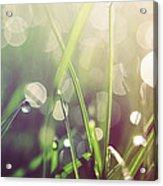 Feeling Good Acrylic Print by Aimelle