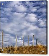 Fenceline In Pasture With Cumulus Acrylic Print by Darwin Wiggett