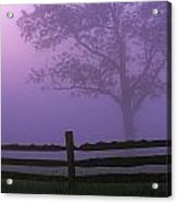 Fenceline Silhouette With Tree Acrylic Print