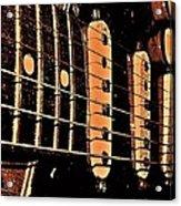 Fender In Brown Acrylic Print