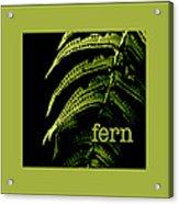 Fern Acrylic Print