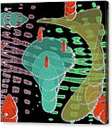Fertilization Acrylic Print