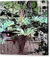 Feuilles Kyoto Acrylic Print