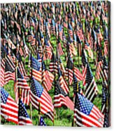 Field Of Flags Acrylic Print