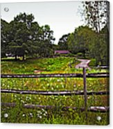 Field Of Flowers 3 Acrylic Print