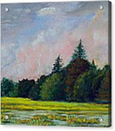 Fields Mid-storm Acrylic Print by Peter Jackson