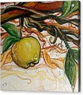 Fifth World Five Acrylic Print