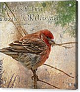 Finch Greeting Card With Verse Acrylic Print